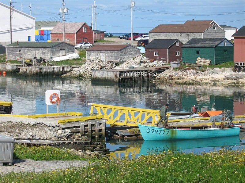 Newfoundland & Labrador CPA Practices for Sale